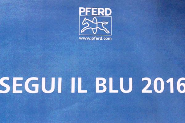 """""""SEGUI IL BLU 2016"""""""